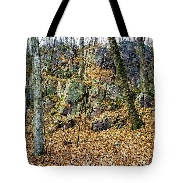 Tote Bag featuring the photograph Devils Lake Rock Formation  by Ricky L Jones