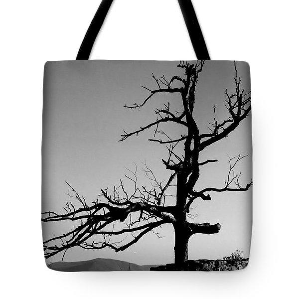 Devoid Of Life Tree Tote Bag