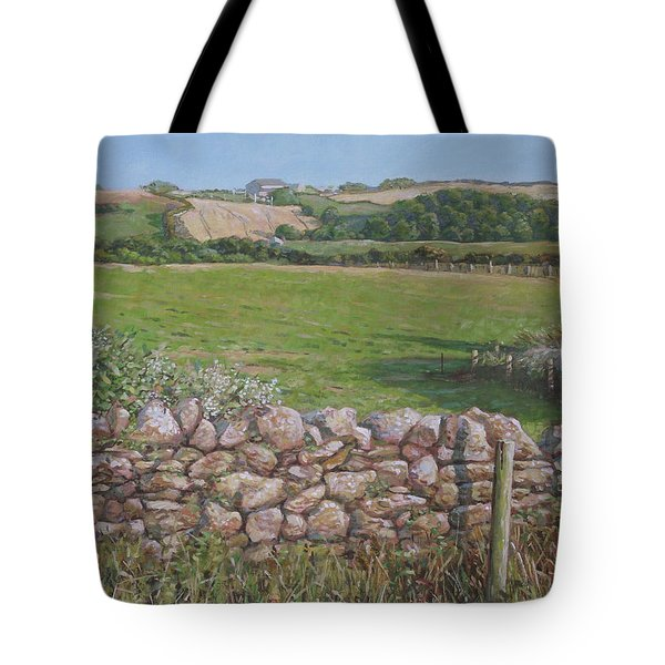 Tote Bag featuring the painting Devon Field And Drystone Wall by Martin Davey