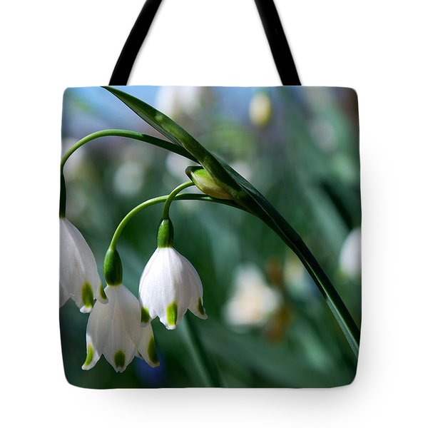 #devoteesofthegoddess Tote Bag by Becky Furgason