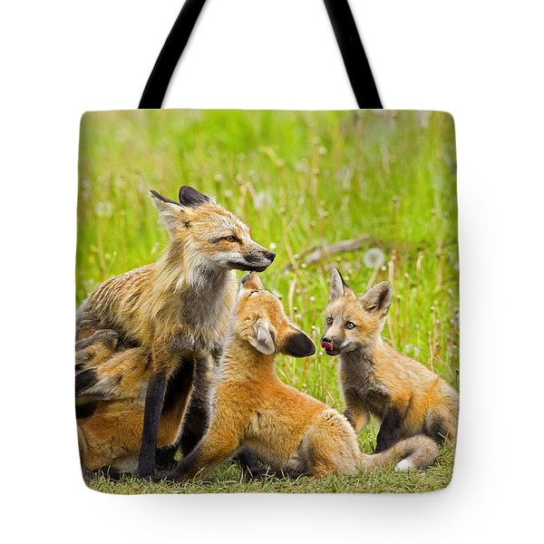 Tote Bag featuring the photograph Devotion by Aaron Whittemore