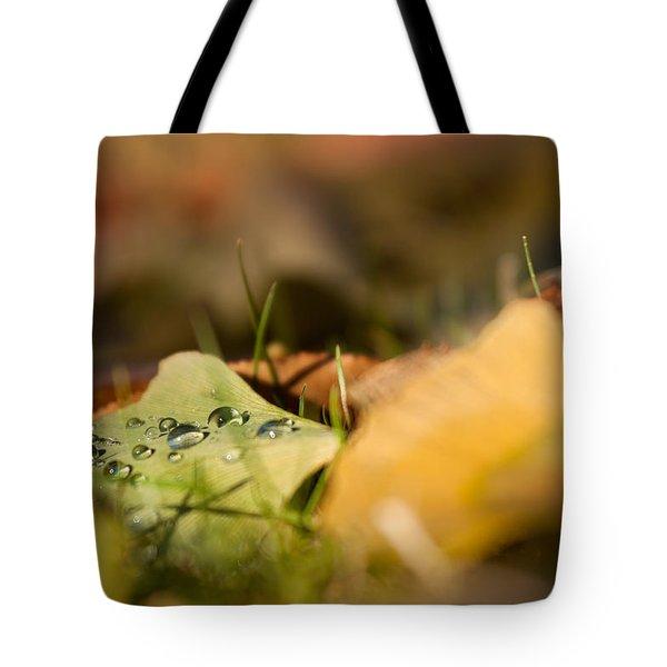 Dew And Gingko  Tote Bag by Bulik Elena