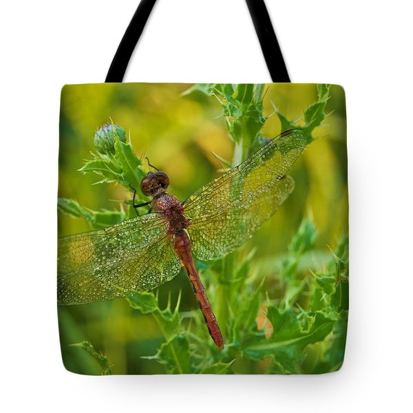 Dew Covered 5904 Tote Bag by Michael Peychich