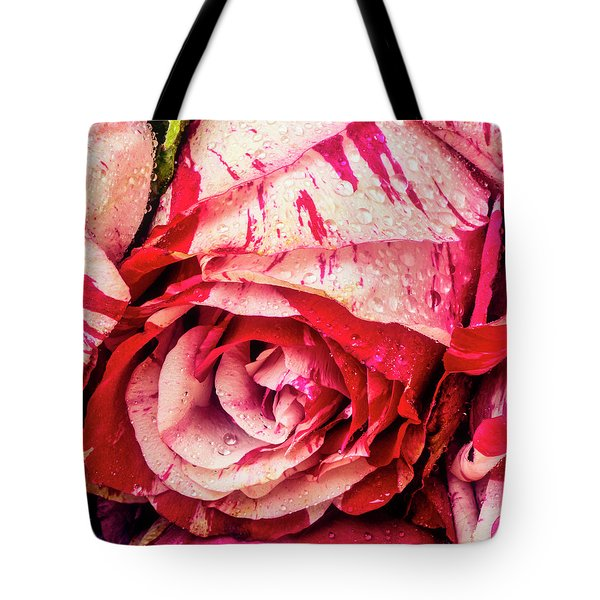 Dew Covered Red White Rose Tote Bag