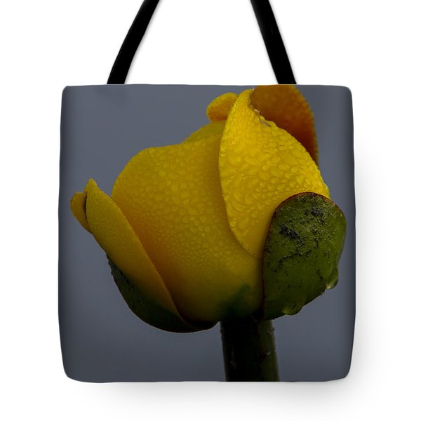 Dew Covered Yellow Water Lily Tote Bag