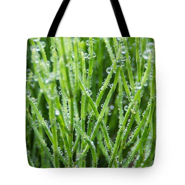 Dew Drop Tote Bag by Cynthia Traun