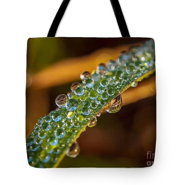 Tote Bag featuring the photograph Dew Drop Reflection by Tom Claud
