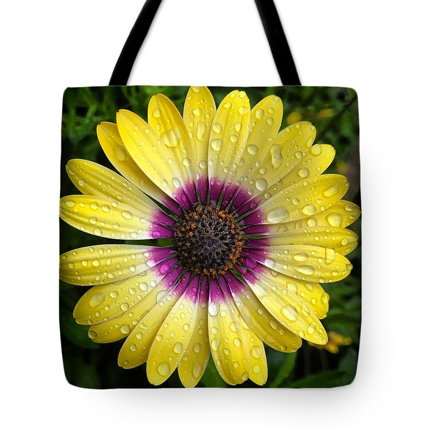 Dew Dropped Daisy Tote Bag