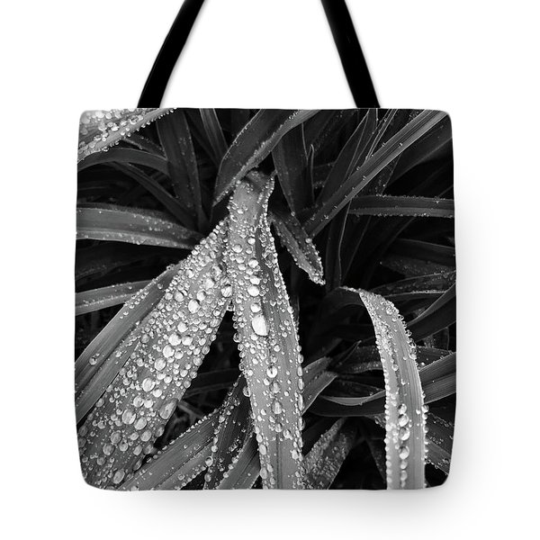 Tote Bag featuring the photograph Dew Drops Await The Sun by Lora Lee Chapman