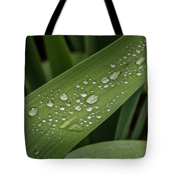 Tote Bag featuring the photograph Dew Drops On Leaf by Jean Noren