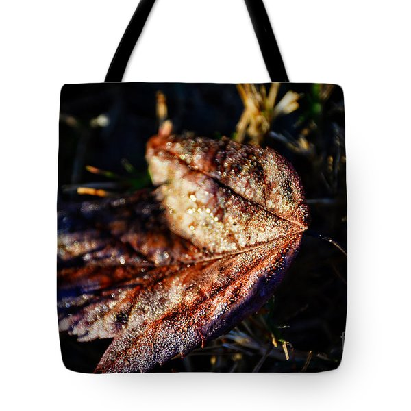 Dew Drops Sparkling And Showing Life On A Leaf -georgia Tote Bag