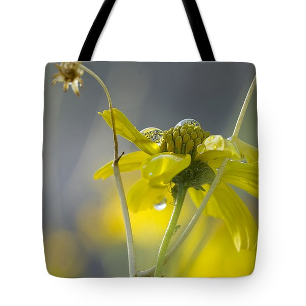 Dew On A Desert Bloom Tote Bag