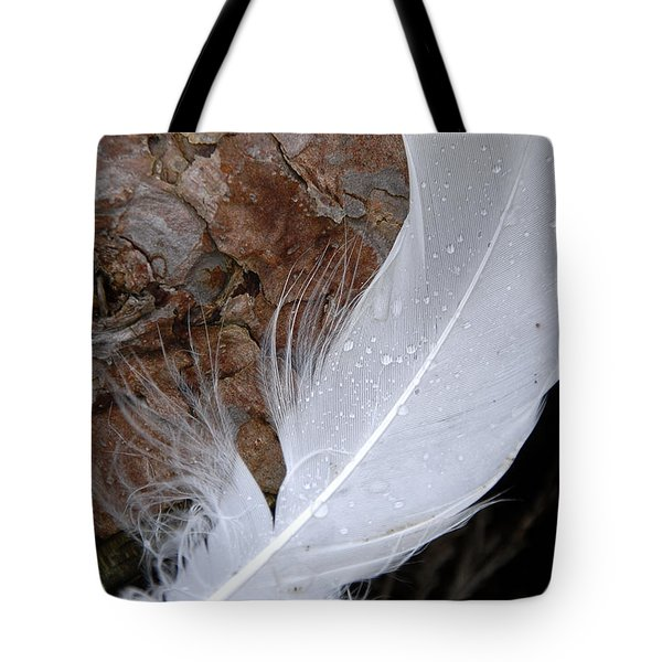 Dew On A Feather Tote Bag by Robert Lacy