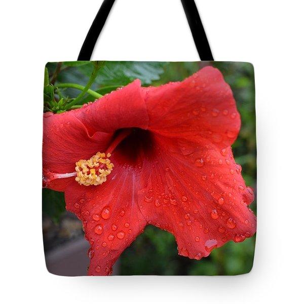 Dew On Flower Tote Bag