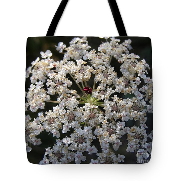 Dew On Queen Annes Lace Tote Bag