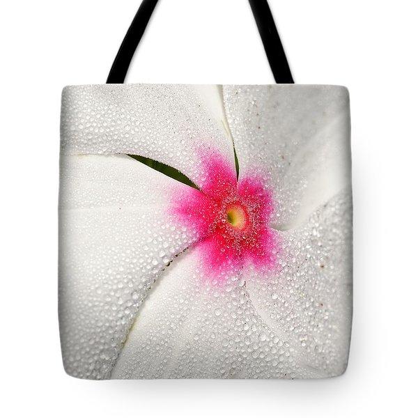 Dew-sprinkled Periwinkle Tote Bag
