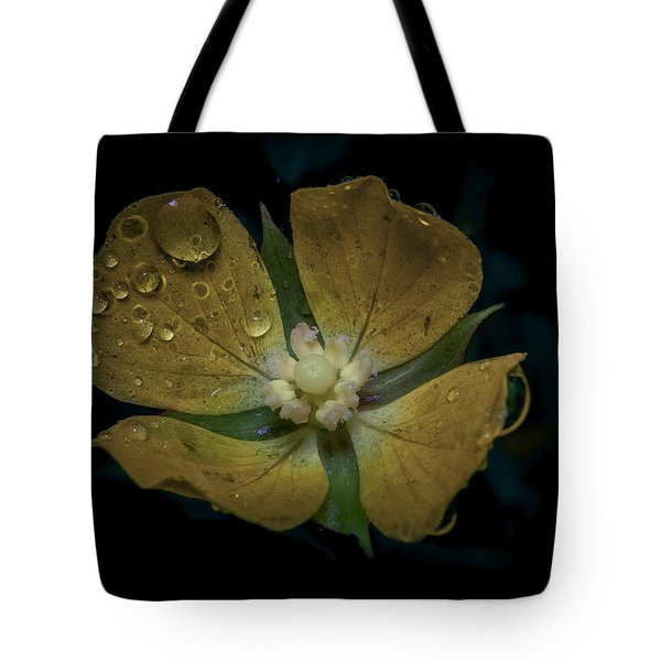 Dew To Drought 546 Tote Bag by Karen Musick