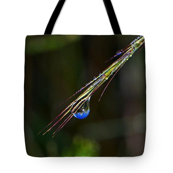 Dewdrop Reflection - Sunrise 001 Tote Bag