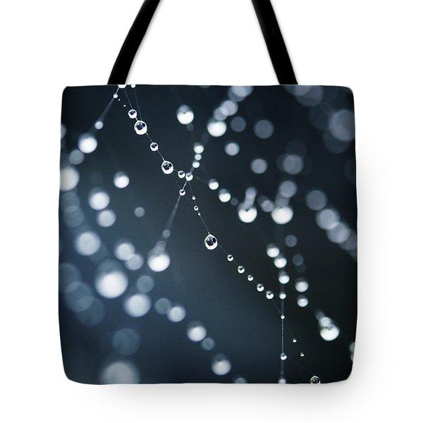 Dewdrops On Cobweb 003 Tote Bag
