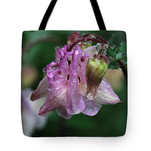 Tote Bag featuring the photograph Dewey Morning Columbine by Susan Capuano