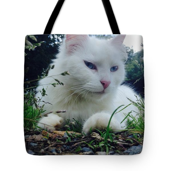 Dewie Tote Bag by Mary Tron