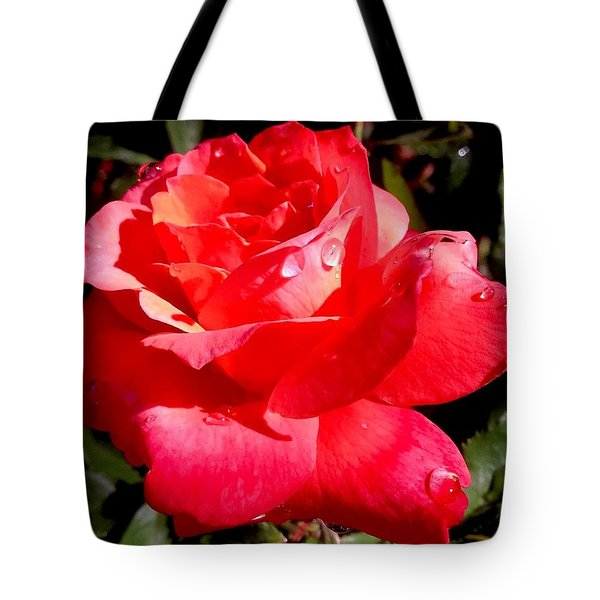 Dewly Noted Tote Bag