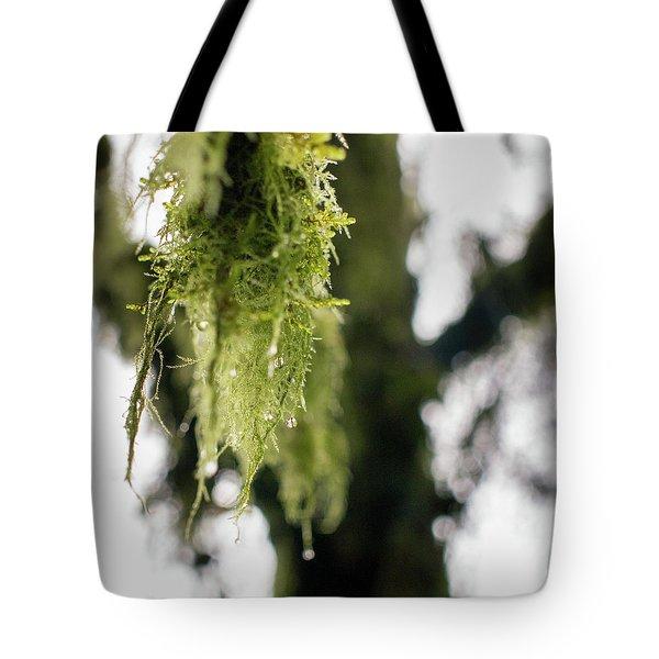 Dewy Moss Tote Bag