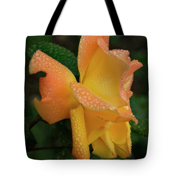 Tote Bag featuring the photograph Dewy Rose by Jean Noren