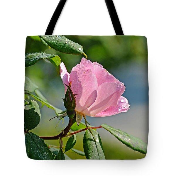 Dewy Rose Tote Bag by Linda Brown