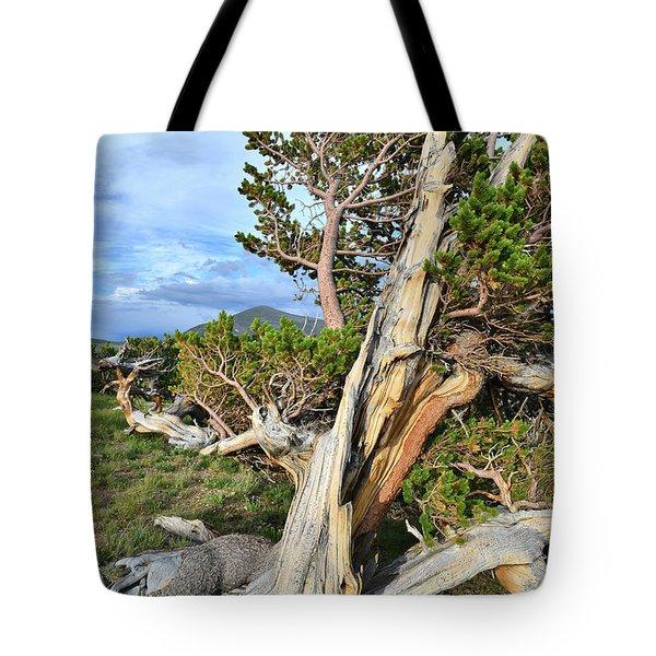 Diablo Tree Tote Bag