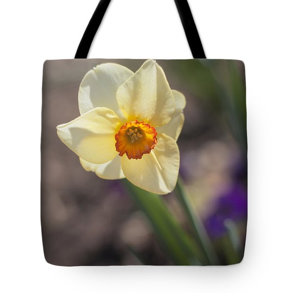 Diagonal Daffy Tote Bag