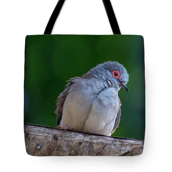Diamond Dove Tote Bag