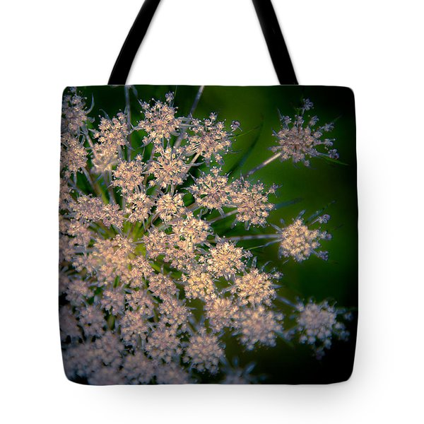 Diamonds Are Forever Tote Bag by Loriental Photography