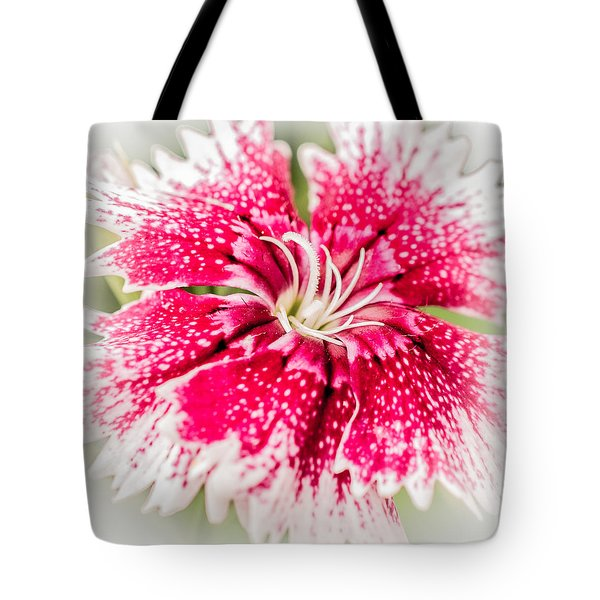 Dianthus Beauty Tote Bag