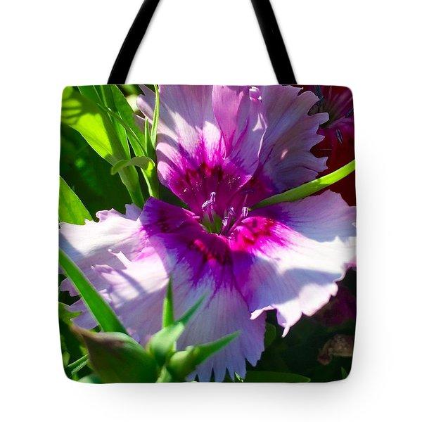 Dianthus Carnation Tote Bag