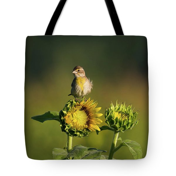 Dickcissel Sunflower Tote Bag