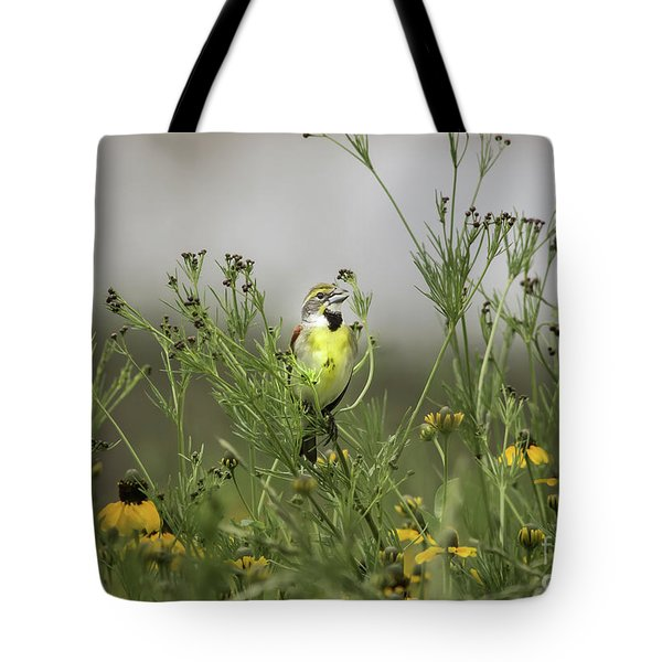 Tote Bag featuring the photograph Dickcissel With Mexican Hat by Robert Frederick