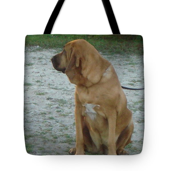 Did You Hear That? Tote Bag by Val Oconnor