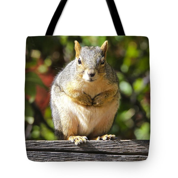 Did You Take My Nuts Tote Bag by James Steele