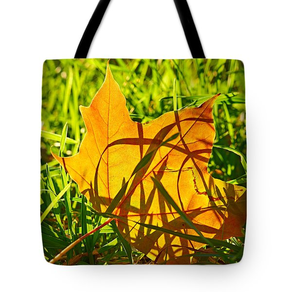 Different Level Tote Bag