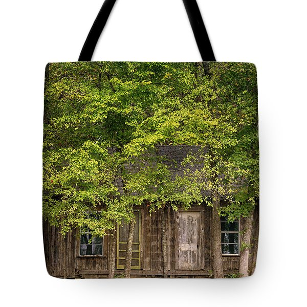 Dilapidated House Tote Bag
