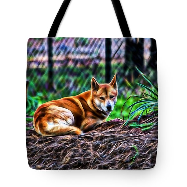 Dingo From Ozz Tote Bag by Miroslava Jurcik