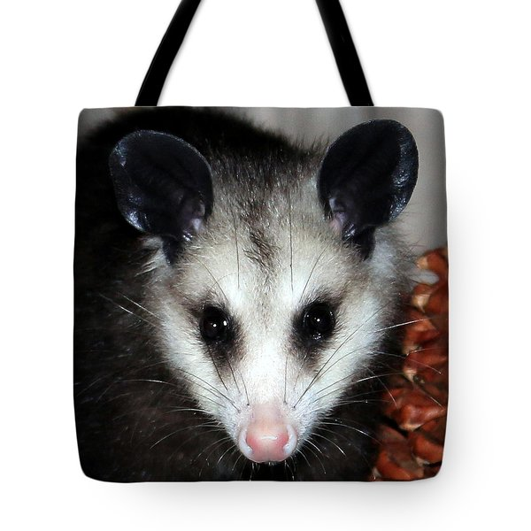Dining Possums Vii Tote Bag