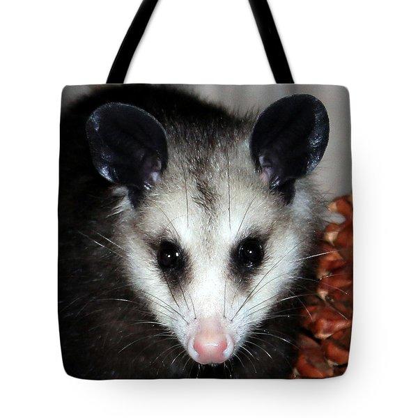 Dining Possums Vii Tote Bag