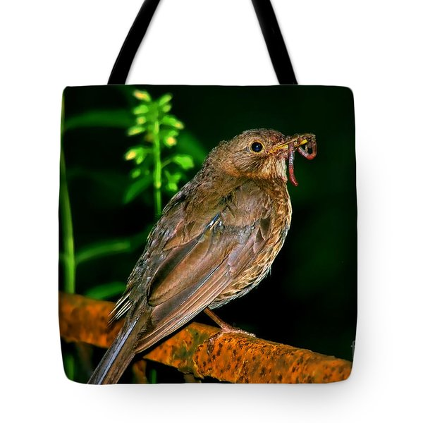 Tote Bag featuring the photograph Dinner Time  by Mariola Bitner