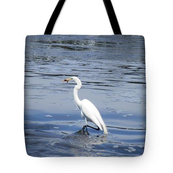 Dinnertime Pelican Tote Bag