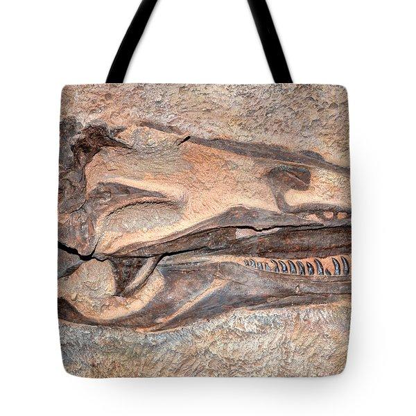 Dinosaur Skull And Teeth In Rock - Utah Tote Bag by Gary Whitton