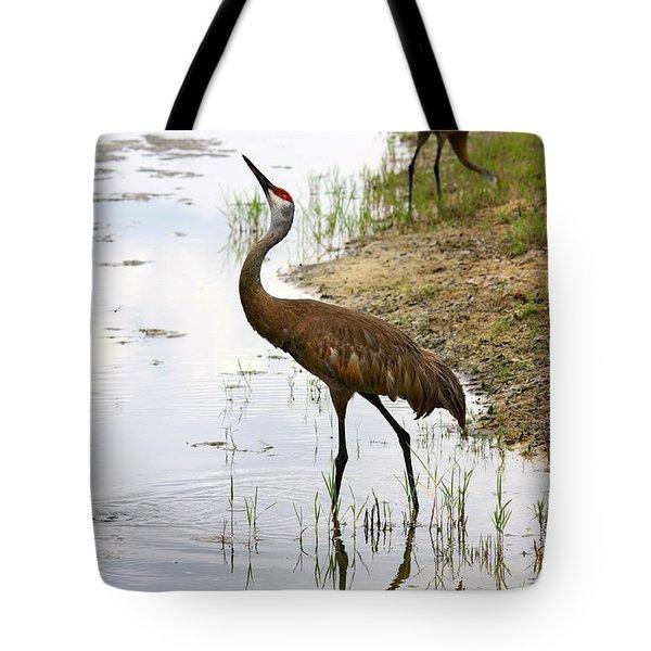 Dip In The Pond Tote Bag by Carol Groenen