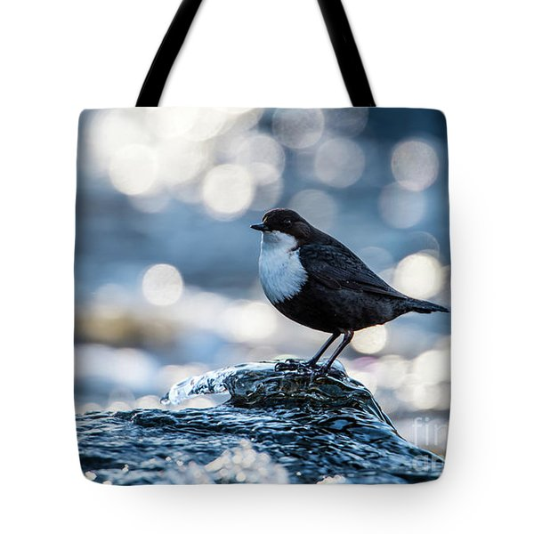 Tote Bag featuring the photograph Dipper On Ice by Torbjorn Swenelius