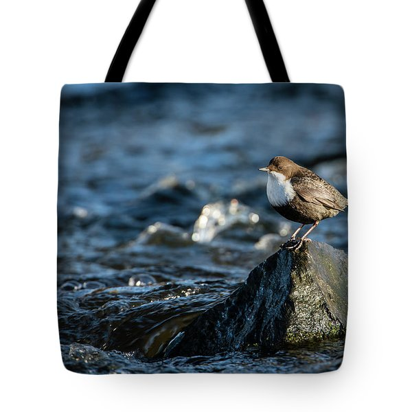Tote Bag featuring the photograph Dipper On The Rock by Torbjorn Swenelius
